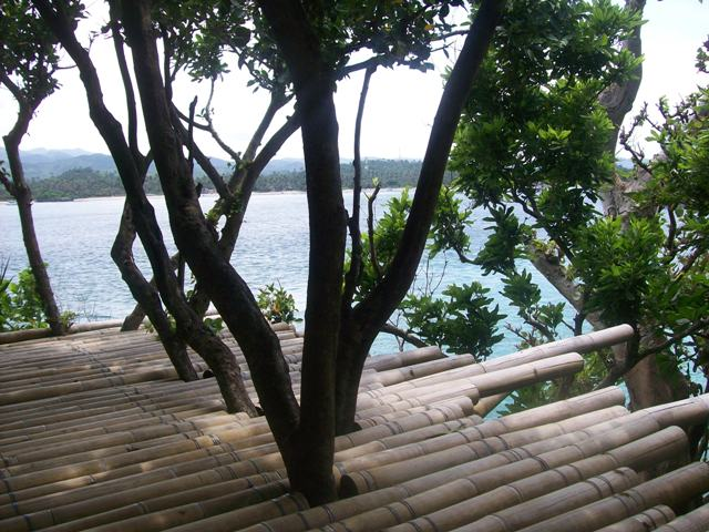 A view from the Bamboo spot