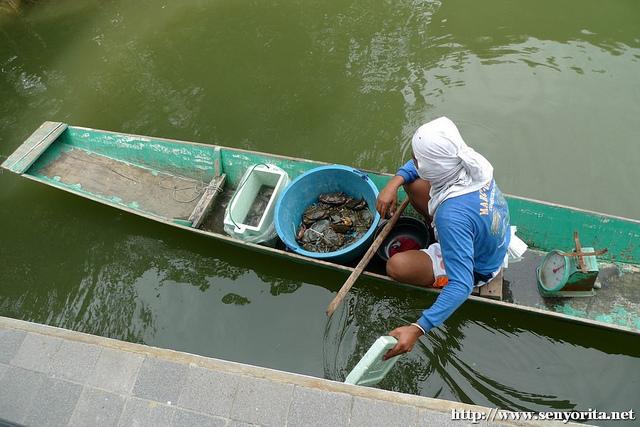 fisherman-dagupan