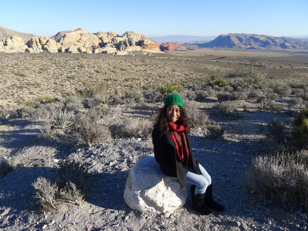 Nature Trip at Red Rock Canyon in Las Vegas
