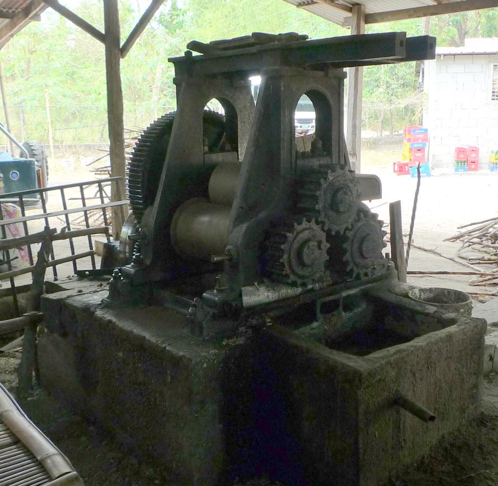 Binalonan-raw-sugar-cane2