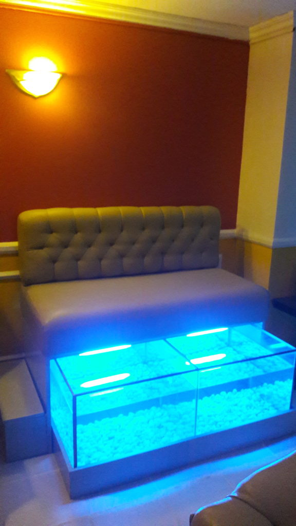 Soulstice Spa's secret: The Fish Spa area!