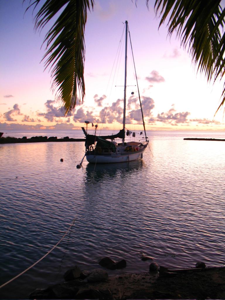 LWACOD-Amazing_Grace_Aitutaki_Cooks-768x1024