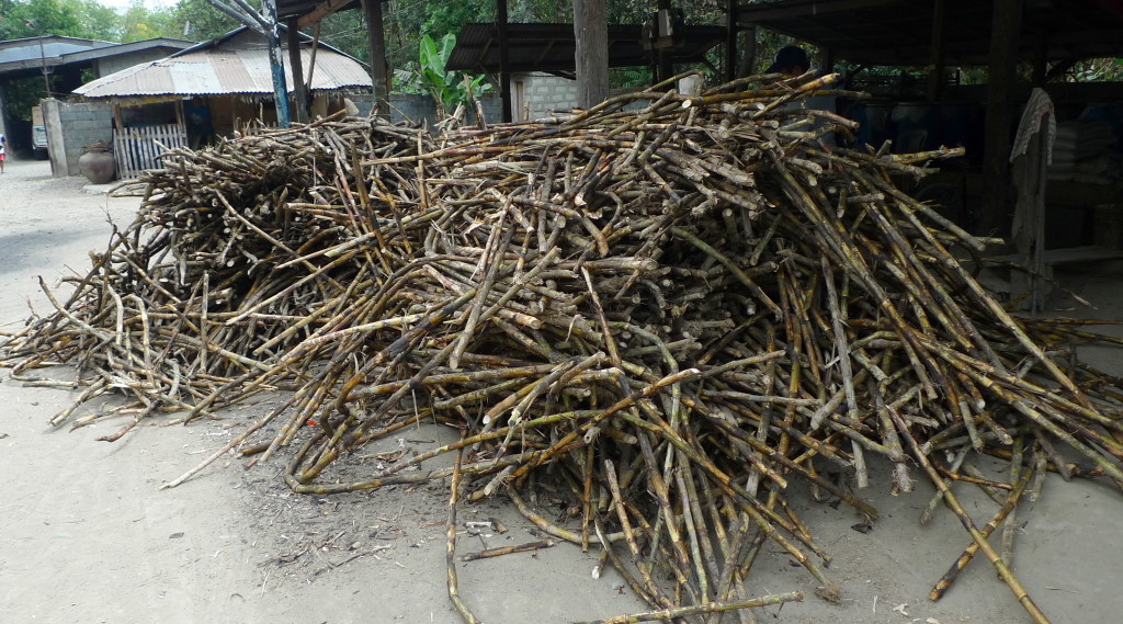 Binalonan-raw-sugar-cane